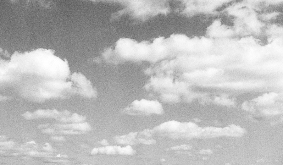 Prairie Sky (and 120 Film)