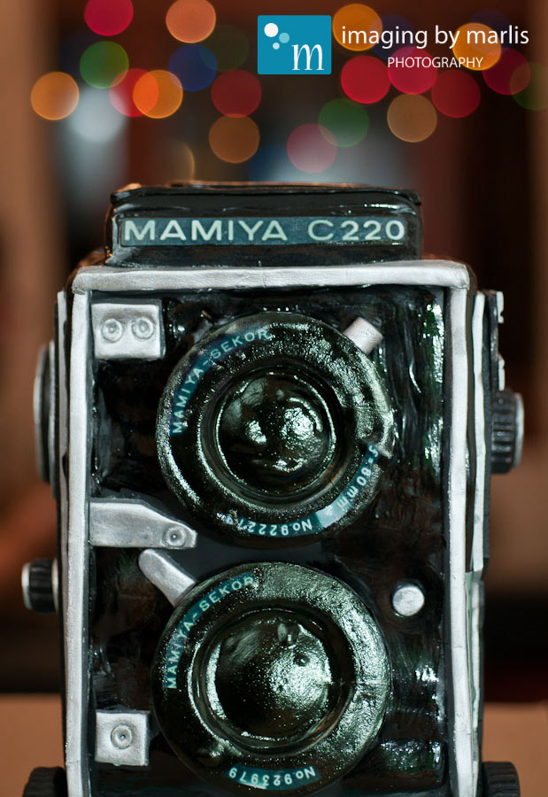 Mamiya-Cake_03 Imaging by Marlis