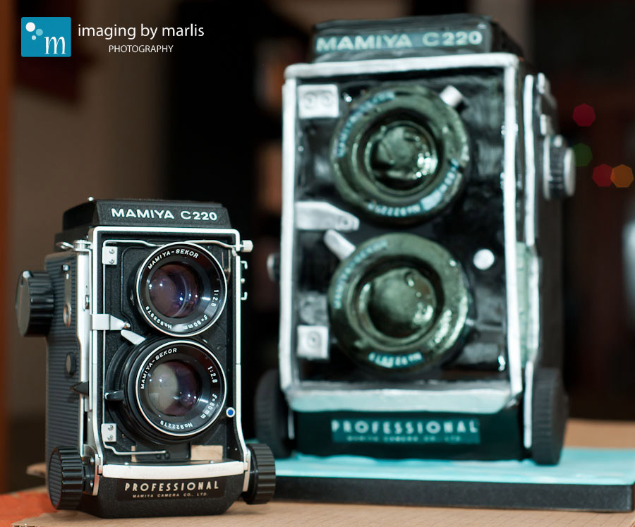 Mamiya-Cake_21 Imaging by Marlis